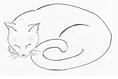 Sleeping Cat Ceramic Studio