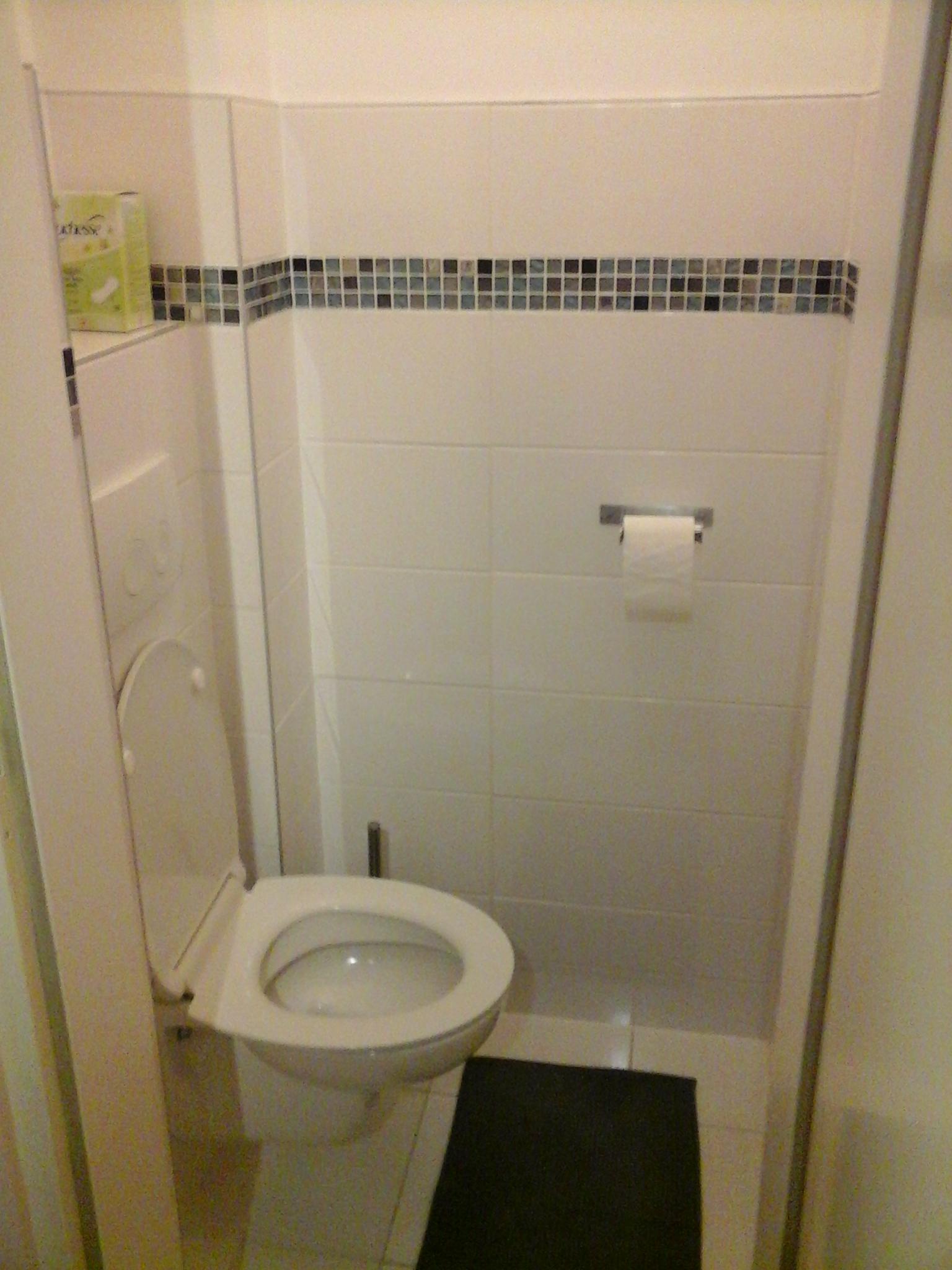 Hänge WC Geberit Weiß mit Mosaik