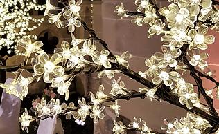 LED Blossom Tree Hire Scotland. Light up trees for hire in Glasgow & Edinburgh. 2m & 3m light up led trees. Wedding Blossom Trees.