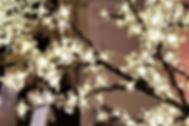 LED Blossom Treesfor hire in Scotland