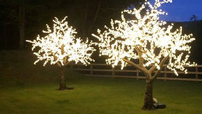 3m LED Light Up Blossom Trees setup in the grounds of Dunkeld House Hotel for a wedding. 2m & 3m LED light up blossom trees for hie throuhout Scotland. Outdoor Light Up Trees for Hire.