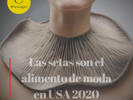 LAS SETAS SON EL ALIMENTO DE MODA EN USA