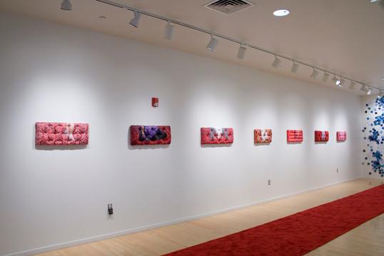 Red Carpet Series