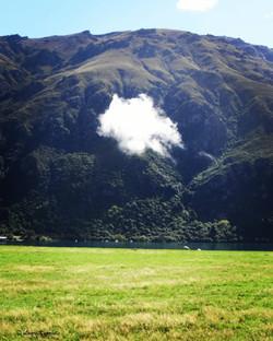 Sheep cloud