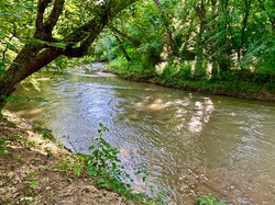 River 1R1 Photo Photo