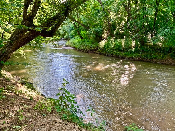 River 1R1 Photo Photo.jpeg