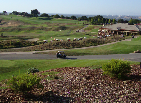 Golf Courses and Recreation Clubs