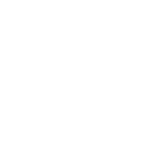 stlogo_small_w.png