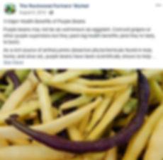 purple beans.JPG