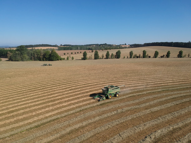 Combining the Willamette Valley