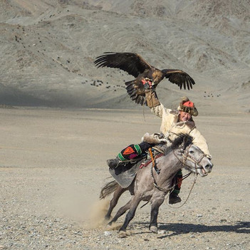 Just a pic from the eagle hunting festiv