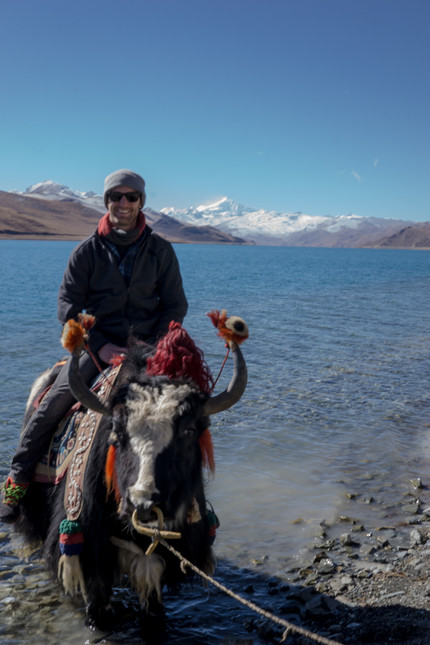 On on a Yak in a lake