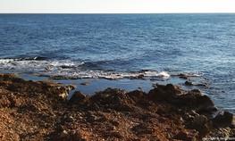 Playa-Les-Arenetes-Dénia.jpg