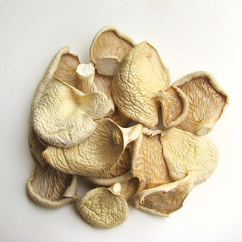 Sun-Dried Oyster Mushrooms