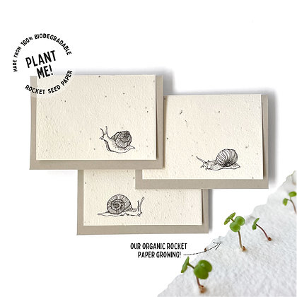 Snail Mail! Plantable Seed Card