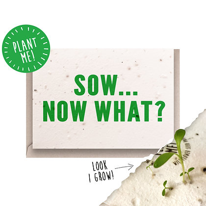Sow... Now What? Plantable Card