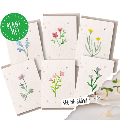 Plantable Seed Wildflower Notecards