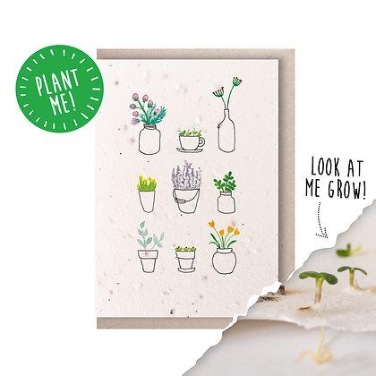 Pot Plant Plantable Seed Card