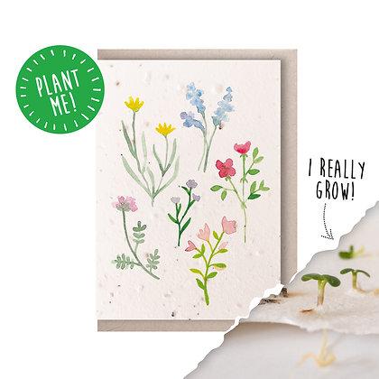 Wildflowers II Plantable Seed Card