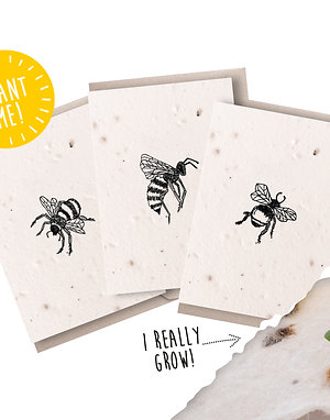 Plantable Seed Bee Notecards