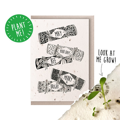Christmas Crackers Plantable Seed Card