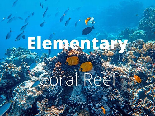 Elementary - Coral Reef
