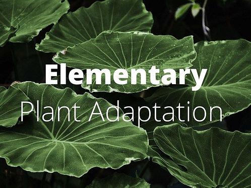 Elementary - Plant Adaptations