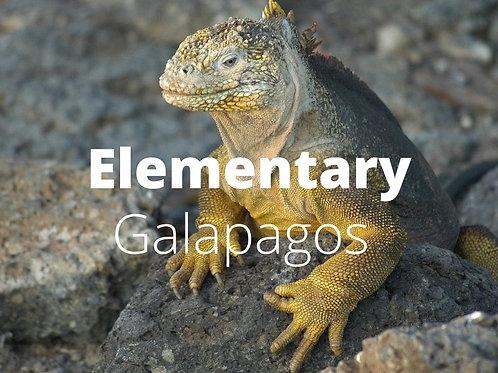 Elementary - Underwater Galapagos