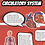 Thumbnail: Explorar: Human Anatomy