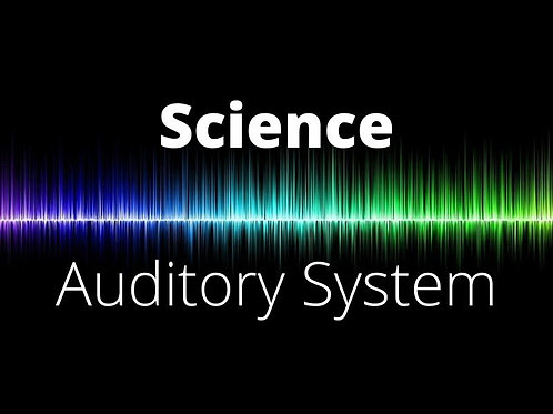 Science - Auditory System