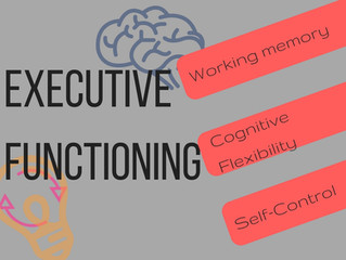 Supporting Students with Executive Functioning