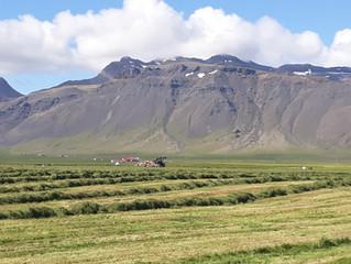 Heima á Snæfellsnesi