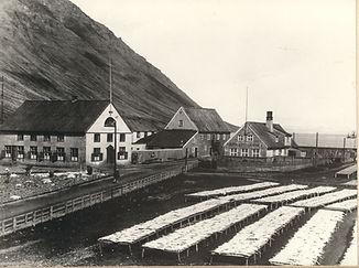Hæstikaupstaður1 1900.jpg