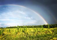 #routegreenrainbow