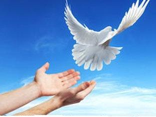 En finir avec les relations toxiques et destructrices((2)