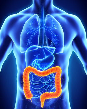 All About Colorectal Colon Cancer In Jamaica