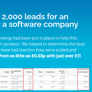 Generated over 2,000 leads for software company