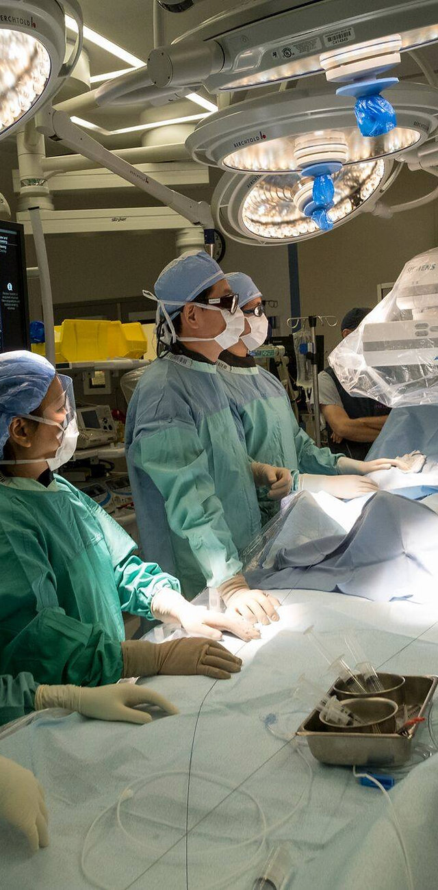 Ubc Vascular Vancouver