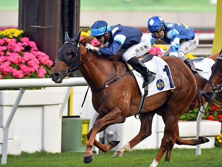 Barrier Manners Do The Trick For Duke Wai In The Sha Tin Feature