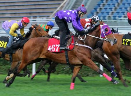 Five facts for Happy Valley: who are the last three jockeys to ride Sun Sun Fa Fa?