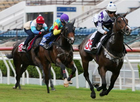 David Hayes unveils generation next at Sha Tin with Give Way Please