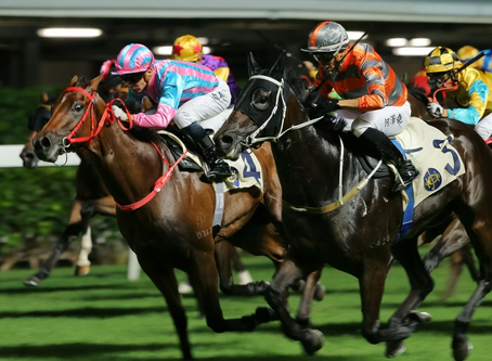 Five facts for Happy Valley: will punters pile into Sell My Sole again?