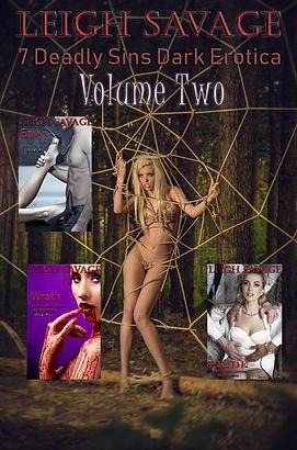 Frontcoverart7DeadlySinsVol2.jpg