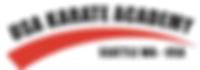 USA Karate Academy Logo.png
