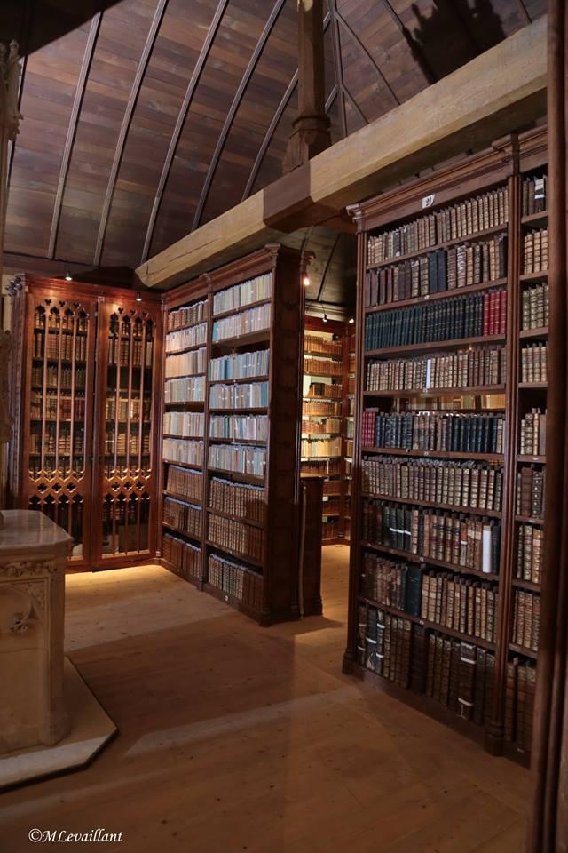bibliotheque chapitre bx
