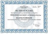 Reinsurance Broker License ReHub.jpg