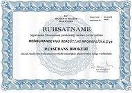 Reinsurance Broker License ReHub.jpg