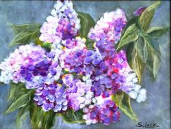 Summer Bloom - 12x10, acrylic
