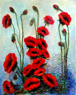 Poppies Blooming 16x20 Acrylic mm