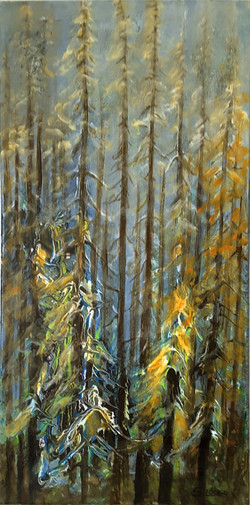 Fall in the Forest - 12x24 - Oct 2017